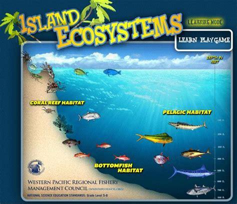 hawaiian fish names list wondering  fishing  hawaii