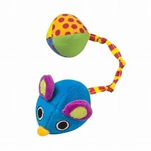 Balle Pour Chat : jouet pour chat souris balle balle pour chat oh pacha ~ Teatrodelosmanantiales.com Idées de Décoration
