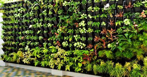 Gardening Solutions-vertical Garden Service Provider