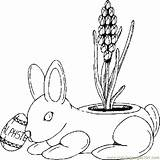 Planter Bunny Coloring Coloringpages101 Holidays sketch template