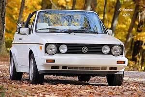 Volkswagen Cabriolet Scirocco Service Manual 1985