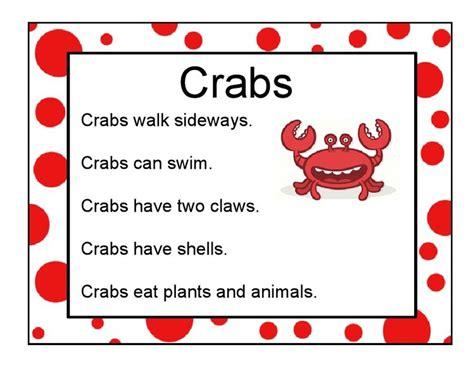 17 best ideas about crab craft preschool on 594 | 5618a69b36ccfd74967bf851abfa48a4