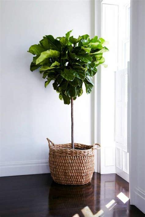 Große Pflanze Wohnzimmer by 65 Vorschl 228 Ge F 252 R Dekoration Im Wohnzimmer Archzine Net