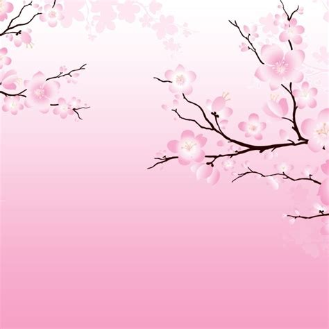 Most Popular Anime Wallpaper - 10 most popular anime cherry blossom wallpaper hd