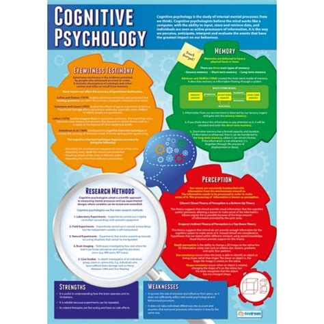 Psychology School Poster  Cognitive Psychology. Seo Optimization Google Property Care Services. Event Registration Software What Is Options. Dish Network Sacramento Ca Team Building Nyc. Project Manager Credentials Pics Of Coffee. Tivoli License Manager Berkeley Online Course. How To Apply For Small Business Loans. Reviews Of Prosper Loans Movie Trading Company. Online General Education Degree