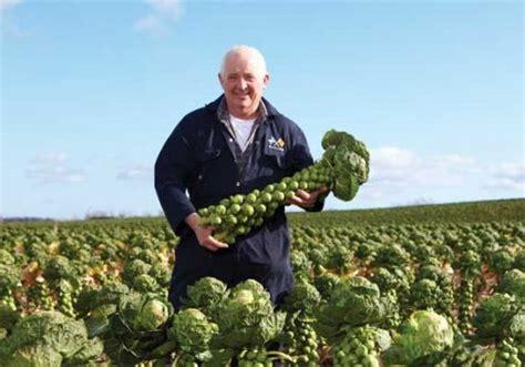Farming UK News - Morrisons to highlight provenance of