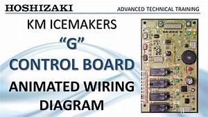 Hoshizaki Km Icemaker - G Control Board