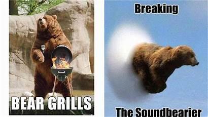 Bear Puns Funny Grizzly Lol Unbearably Fun