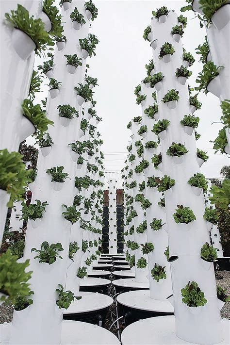 Garden Modules by Think Vertical Farm Tower Gardens As A Series Of