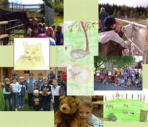 Tiere Für Kinder : willkommen bei der gewerkschaf f r tiere e v f r kinder ~ Lizthompson.info Haus und Dekorationen