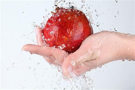 igiene degli alimenti igiene degli alimenti ecostudio