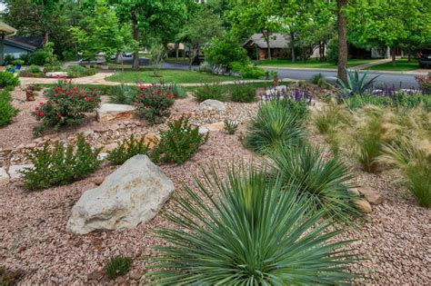 xeriscape garden plants xeriscape design ideas hgtv