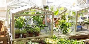 Serre D Intérieur : une mini serre pour jardiner l 39 int rieur nouvelle vie magazine ~ Preciouscoupons.com Idées de Décoration