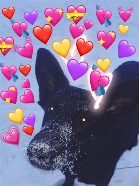 heart emoji meme dog bujo prints heart emoji cute