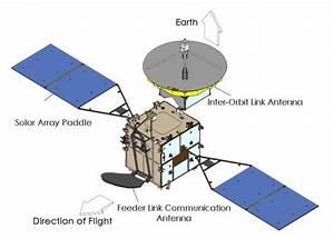 Kodama Satellite Drawing  76