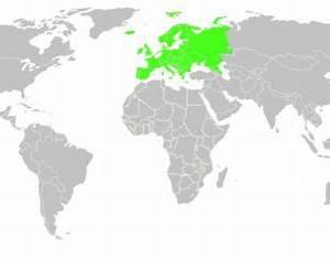 где находится северная осетия на карте мира