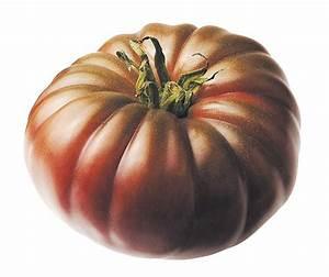 Tomate Noir De Crimée : des tomates pour nous rafra chir cuisinons les legumes ~ Dailycaller-alerts.com Idées de Décoration