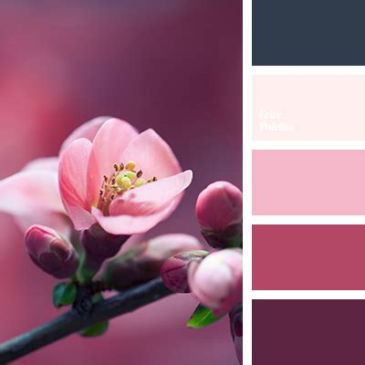 cherry blossom color pastel shades of cherry blossom color palette ideas