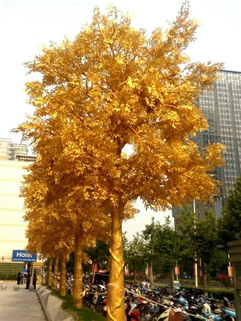 and gold trees gold tree