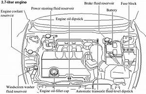 Engine Compartment Overview - Maintenance And Care