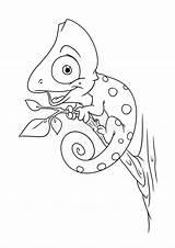 Camaleonte Kameleon Kleurende Dierlijke Halsey Adulti Degli Esquirlas Coloringlesson Animale Impagina Coloritura Fumetto sketch template