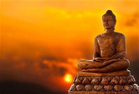 shop buddha  yellow background wallpaper  zen theme