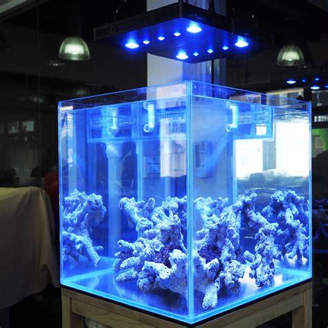 cuisiner la tanche re eclairage led aquarium 28 images 19 28 48 62cm led
