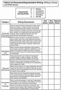 Cause And Effect College Essay 018 Essay Example Sample Cause And Effect Outline Topics L