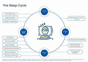 Learn More About The Sleep Environment Of Your Home