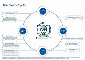 Toddler Sleep Diagram