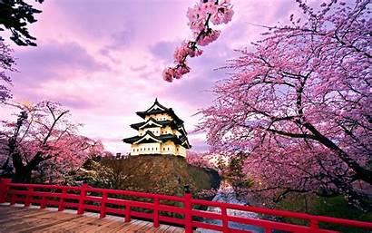 Gambar Pemandangan Jepang Indah Populer Paling Hirosaki