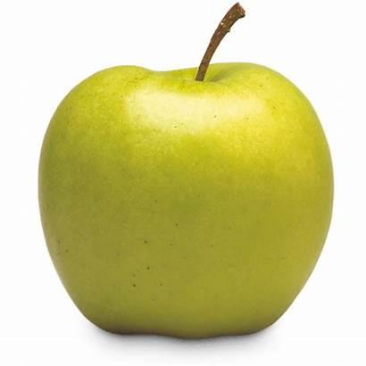 Apple Varieties Ontario Crispin Yellow Tart Sweet
