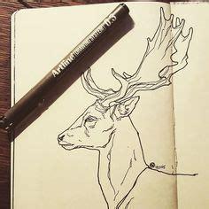 deer drawing tumblr  deer  pinterest