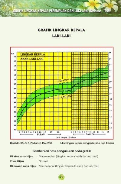 grafik lingkar kepala