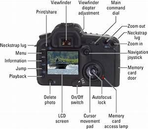 Digital Slr Cameras  U0026 Photography For Dummies Cheat Sheet