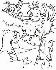 Free Zacchaeus Tree Coloring Page