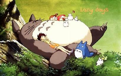 Totoro Neighbor Ghibli Studio Kb