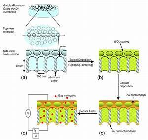 Super Sensitive Gas Detector Goes Down The Nanotubes