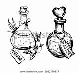 Potion Bottles Drawing Poison Potions Bottle Vector Drawn Illustration Tattoo Hand Drawings Clip Cute Sketches Tattoos Coloring Cartoon Sketch Converted sketch template