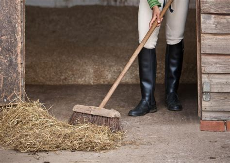 stall stable horse cleaning clean muck horses rabbit cuadra cage stables dirty higiene cages woman equipment way