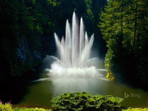 canada ross fountain  butchart gardens  bing desktop