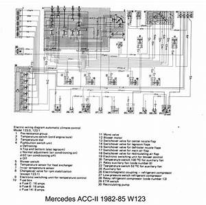 W123 Wiring Diagram 1984