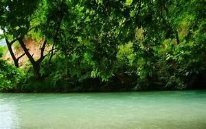 Nature, Landscape, River, Greece, Trees, Green, Spring