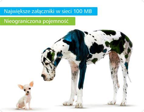 Konto Portalowe, Wirtualna Polska Media S.A