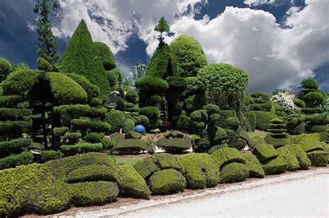 pearl fryar pearl fryar s topiary garden how does my garden grow pinterest gardens pearls and