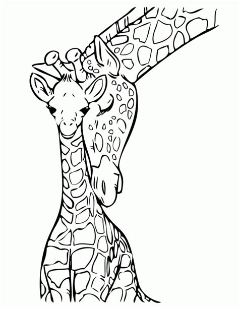 baby giraffe  mommy coloring page   coloring pages