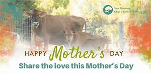 Email - Celebrate Mothers with Adopt a Farm Animal - Farm ...