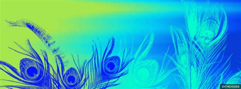 facebook timeline cover backgrounds entheosweb