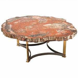 petrified wood coffee table france 1970s for sale at 1stdibs With petrified wood coffee table for sale