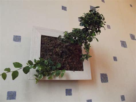 faire un cadre vegetal cadre v 233 g 233 tal sphaigne du chili